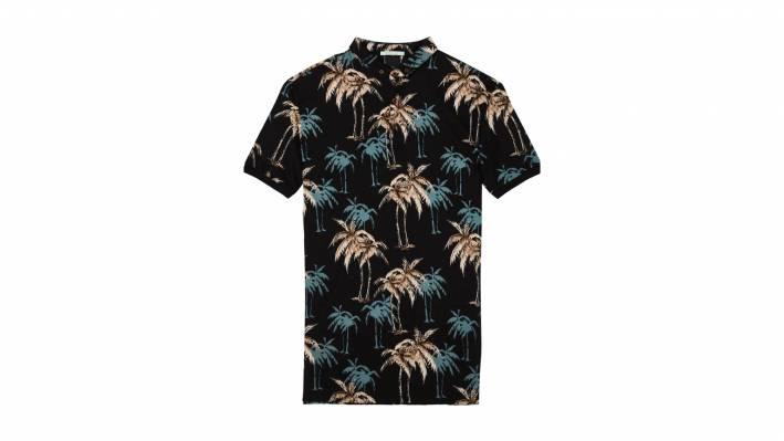 polo palm trees