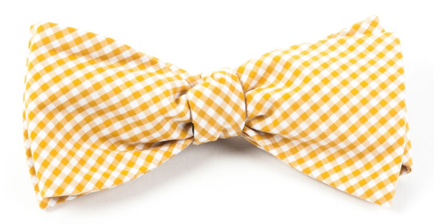 the tie bar, bowtie, gingham print, what women want