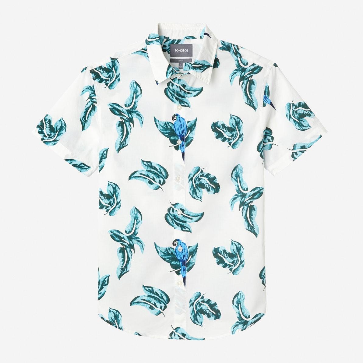 parrots shirt