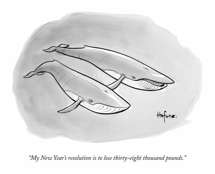 new yorker whale cartoon
