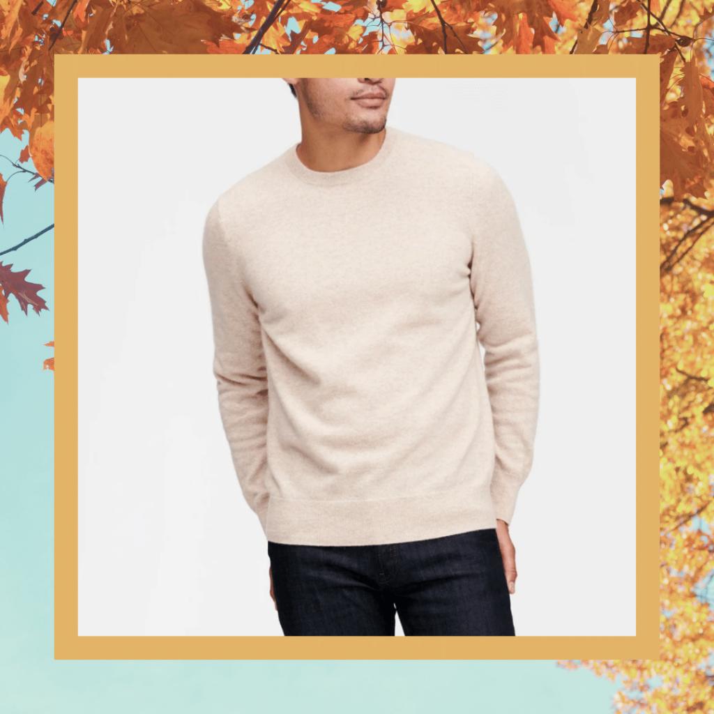 naadam oatmeal cashmere sweater