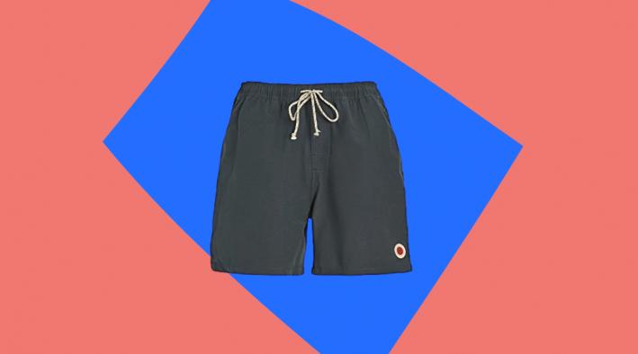 mollusk grey swim trunks